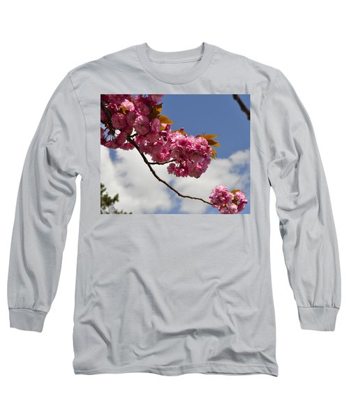 Apple Beauty Long Sleeve T-Shirt by Jim Brage
