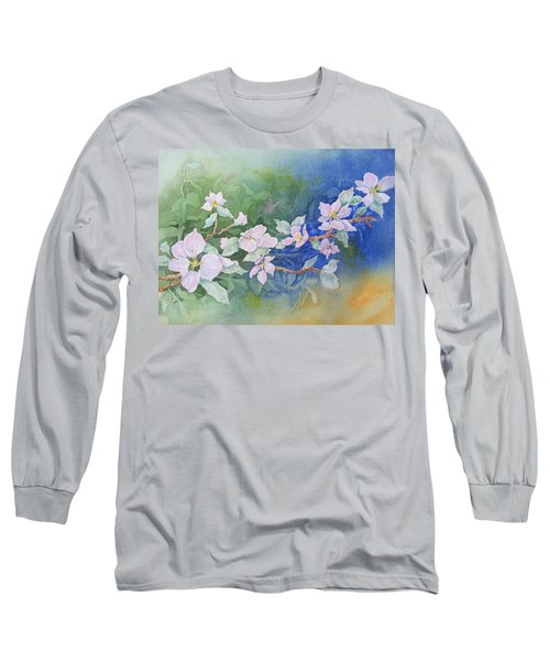Apple Blossoms 2 Long Sleeve T-Shirt by Christine Lathrop