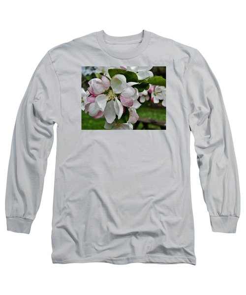 Apple Blossoms 2 Long Sleeve T-Shirt by VLee Watson