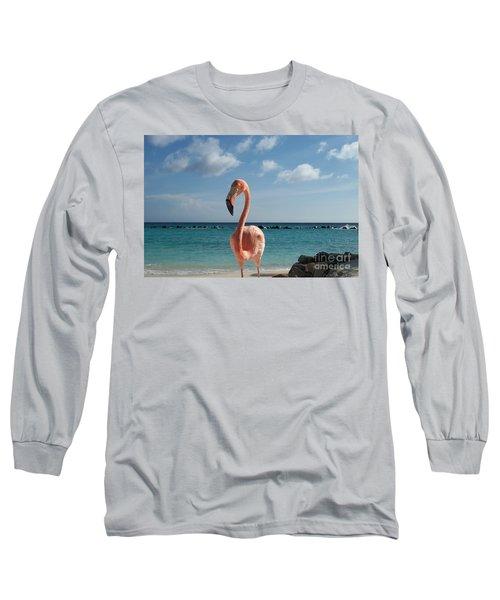Aruba Hairy Eyeball Long Sleeve T-Shirt