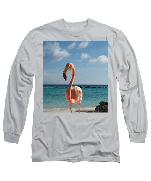 Aruba Hairy Eyeball Long Sleeve T-Shirt