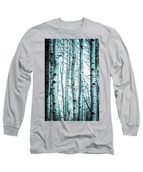 Aspen Blues Long Sleeve T-Shirt by Debbie Karnes