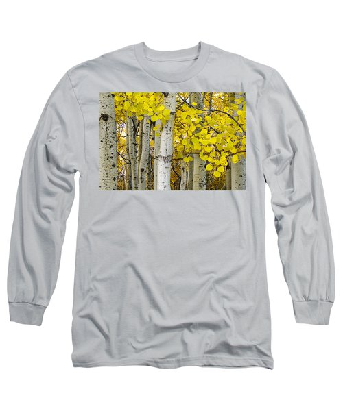 Aspens At Autumn Long Sleeve T-Shirt by Andrew Soundarajan
