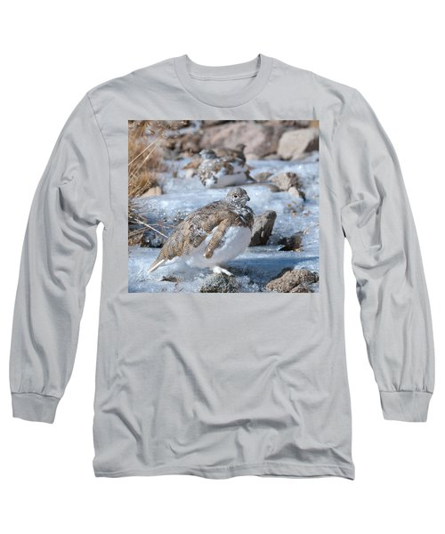 Autumn Plumage White-tailed Ptarmigan Long Sleeve T-Shirt