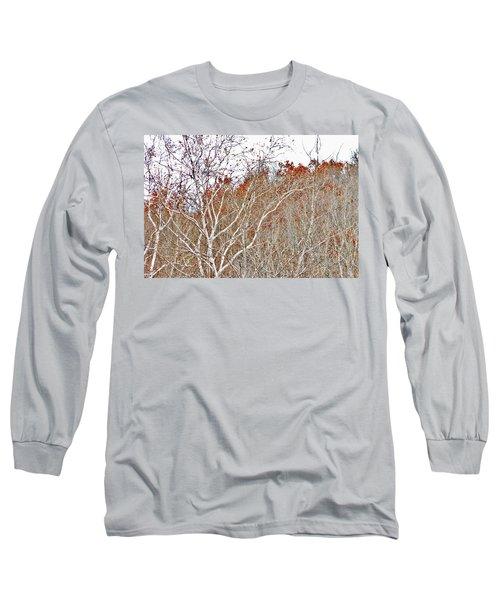 Autumn Sycamores Long Sleeve T-Shirt by Bruce Patrick Smith