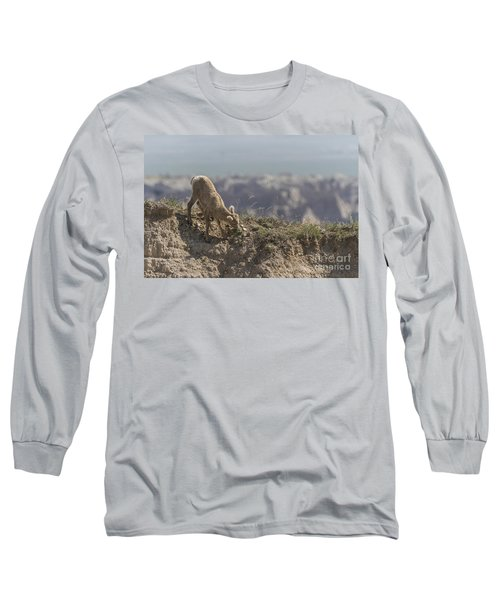 Baby Bighorn In The Badlands Long Sleeve T-Shirt