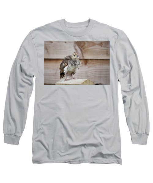 Baby Peacock Long Sleeve T-Shirt