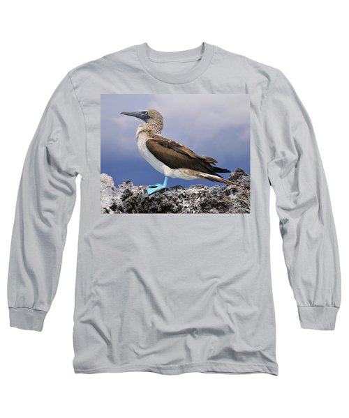Blue-footed Booby Long Sleeve T-Shirt by Tony Beck