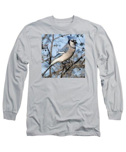 Blue Jay.. Long Sleeve T-Shirt by Nina Stavlund