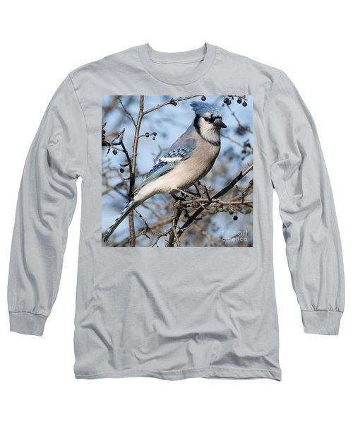 Blue Jay.. Long Sleeve T-Shirt