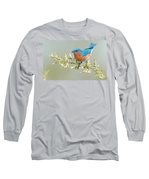 Bluebird Floral Long Sleeve T-Shirt
