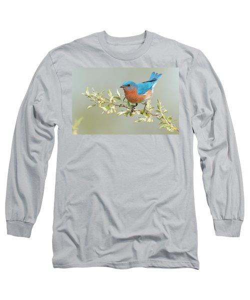 Bluebird Floral Long Sleeve T-Shirt