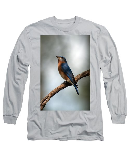 Bluebird -why Yes Long Sleeve T-Shirt