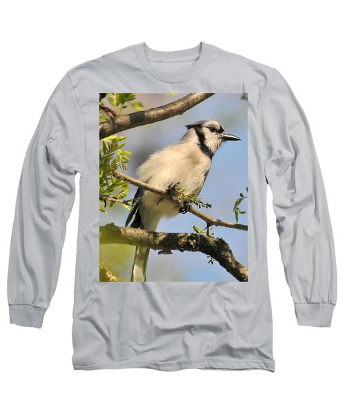 Bluejay 310 Long Sleeve T-Shirt