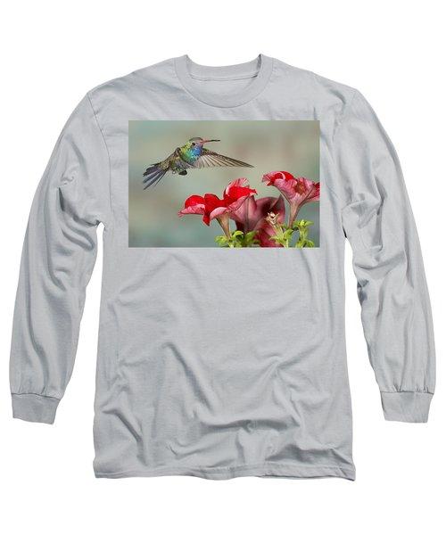 Broad Billed Hummingbird 4 Long Sleeve T-Shirt