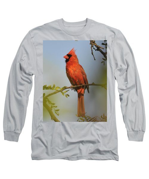 Cardinal 329 Long Sleeve T-Shirt