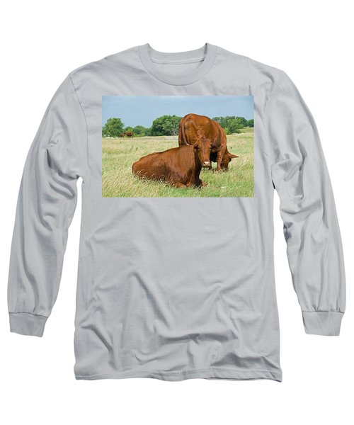 Long Sleeve T-Shirt featuring the photograph Cattle Grazing In Field by Charles Beeler