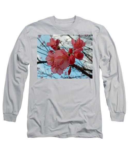 Cherry Blossoms Long Sleeve T-Shirt by Pamela Walton