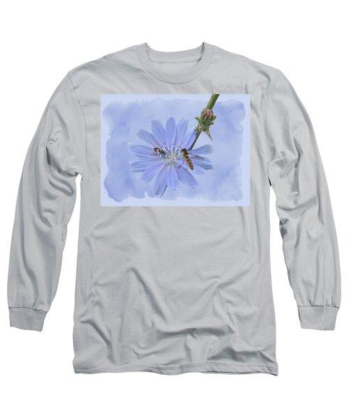 Chicory Wildflower - Cichorium Intybus Long Sleeve T-Shirt