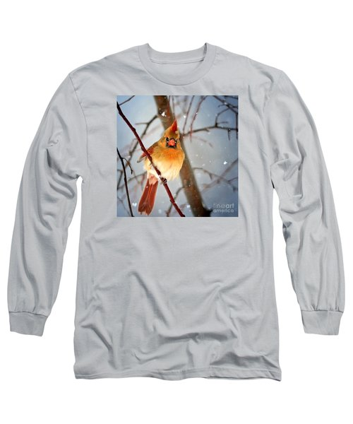 Northern Cardinal Snow Scene Long Sleeve T-Shirt by Nava Thompson