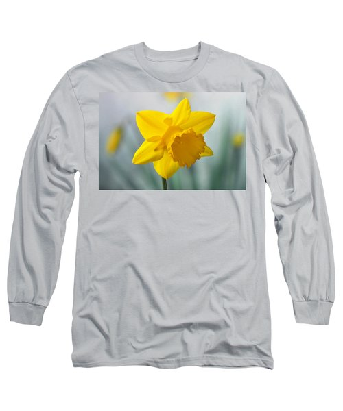 Classic Spring Daffodil Long Sleeve T-Shirt by Terence Davis