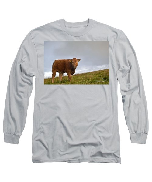 Cliffs Of Moher Brown Cow Long Sleeve T-Shirt
