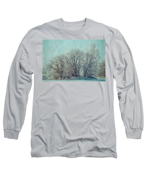 Cold Winter Day Long Sleeve T-Shirt