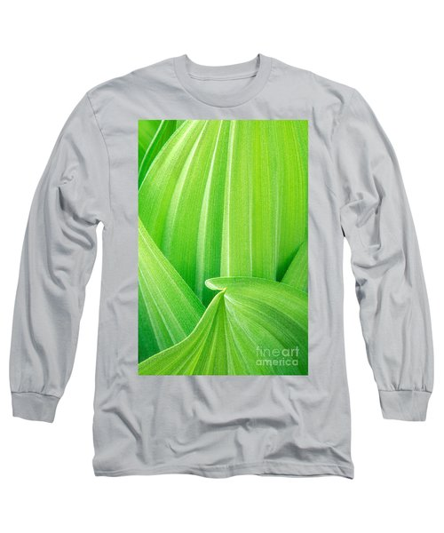 Long Sleeve T-Shirt featuring the photograph Corn Lily Leaf Detail Yosemite Np California by Dave Welling