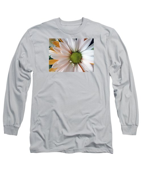 Long Sleeve T-Shirt featuring the photograph Creamsicle by Jean OKeeffe Macro Abundance Art