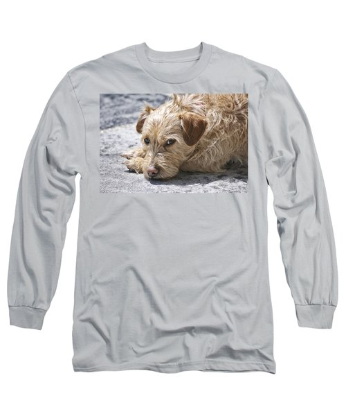 Long Sleeve T-Shirt featuring the photograph Cruz You Looking At Me by Thomas Woolworth