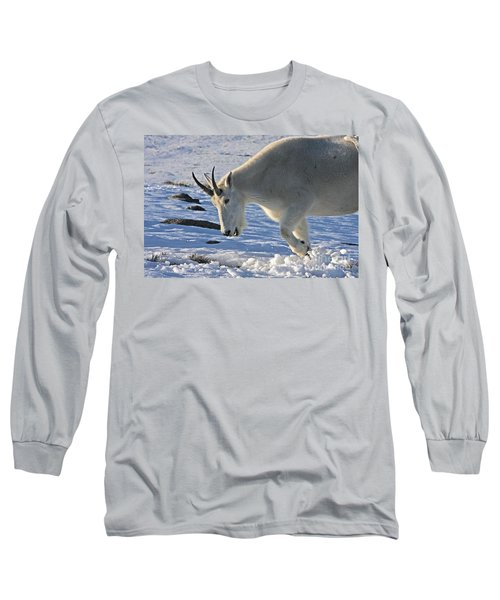 Digging For Dinner Long Sleeve T-Shirt