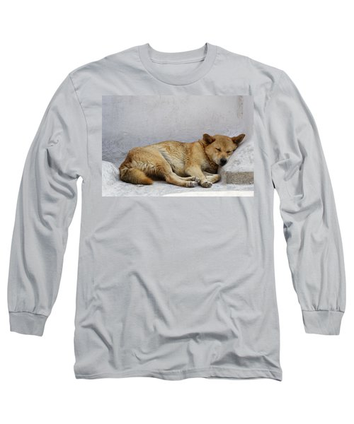 Dog Sleeping Long Sleeve T-Shirt