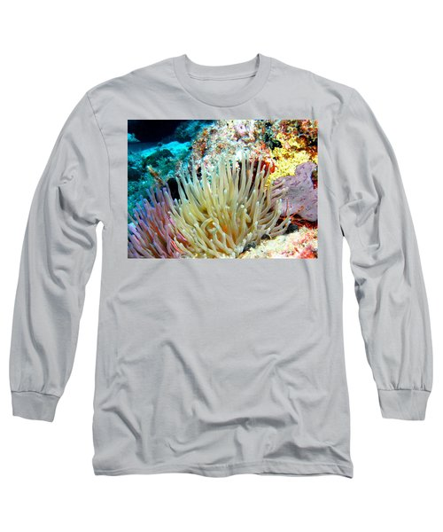 Double Giant Anemone And Arrow Crab Long Sleeve T-Shirt by Amy McDaniel