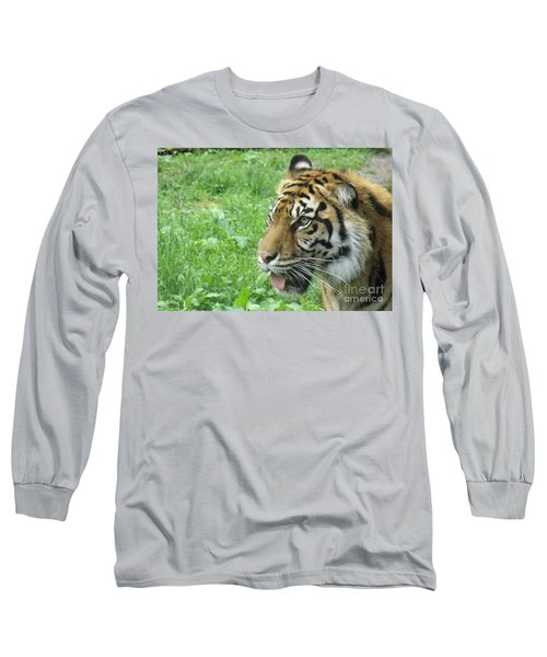 Long Sleeve T-Shirt featuring the photograph Eye Of The Tiger by Lingfai Leung