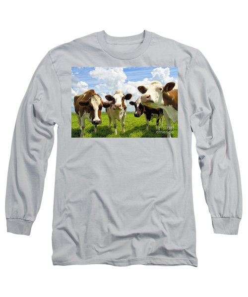 Four Chatting Cows Long Sleeve T-Shirt