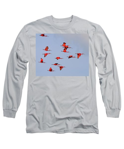 Frankly Scarlet Long Sleeve T-Shirt