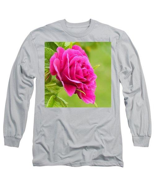 Friendship Rose Long Sleeve T-Shirt