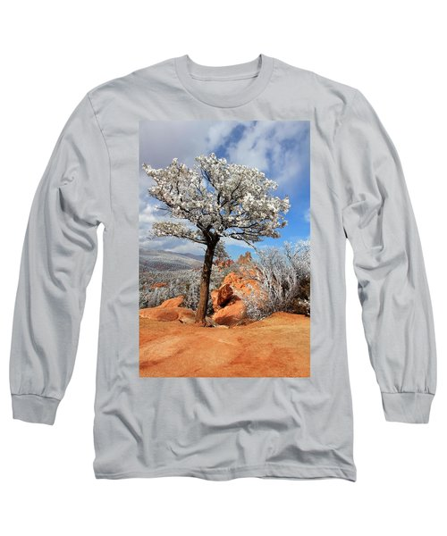 Frosted Wonderland 3 Long Sleeve T-Shirt