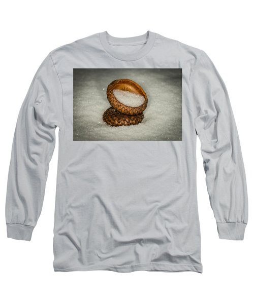 Frozen Acorn Cupule Long Sleeve T-Shirt by Paul Freidlund