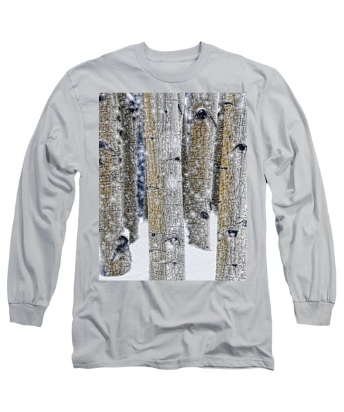 Gently Falling Forest Snow Long Sleeve T-Shirt by Don Schwartz