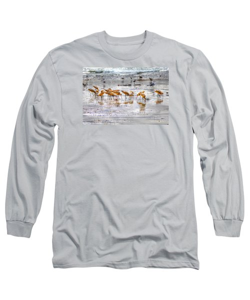 Godwits At San Elijo Beach Long Sleeve T-Shirt