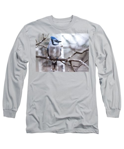 Gorgeous Blue Jay Long Sleeve T-Shirt
