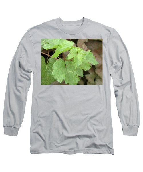 Grapevine Long Sleeve T-Shirt by Laurel Powell