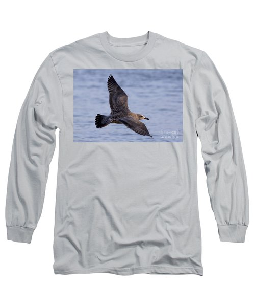 Long Sleeve T-Shirt featuring the photograph Herring Gull In Flight Photo by Meg Rousher