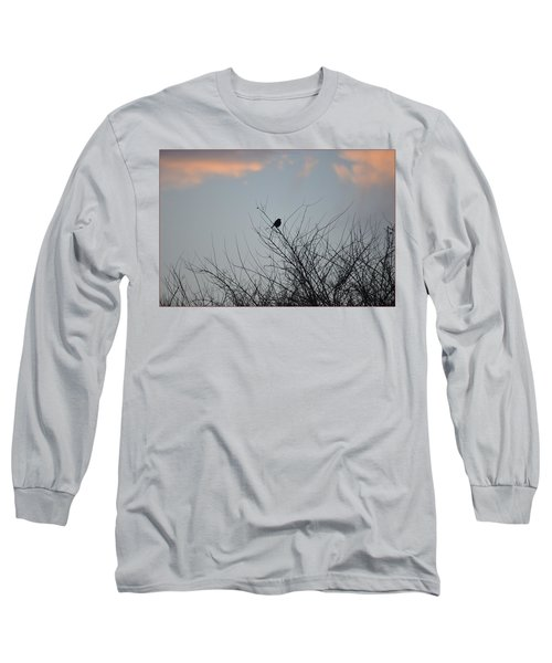 Hope Perched  Atop Long Sleeve T-Shirt