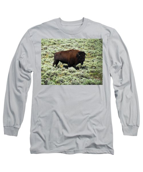 I Am The King Of This Meadow Long Sleeve T-Shirt