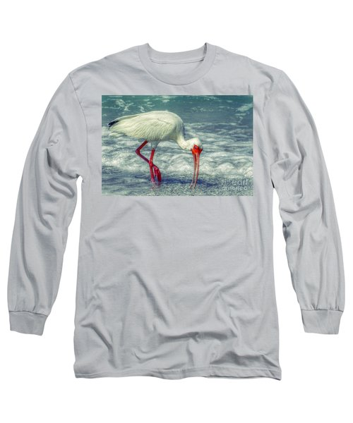 Ibis Feeding Long Sleeve T-Shirt