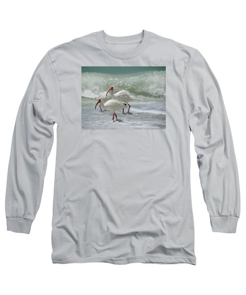 Ibis Pair Long Sleeve T-Shirt by Melinda Saminski