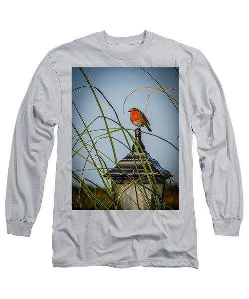 Irish Robin Perched On Garden Lamp Long Sleeve T-Shirt