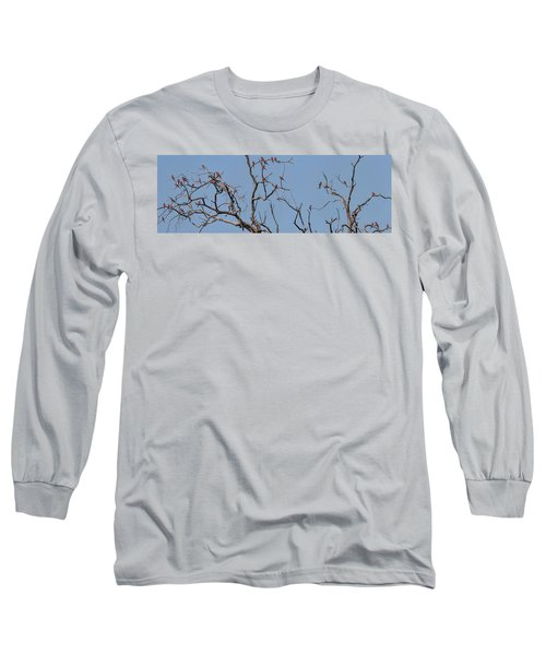 Low Angle View Of Southern Carmine Long Sleeve T-Shirt